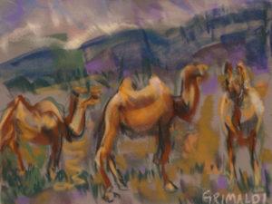 Susan Ross Grimaldi,, Camels in Mongolia